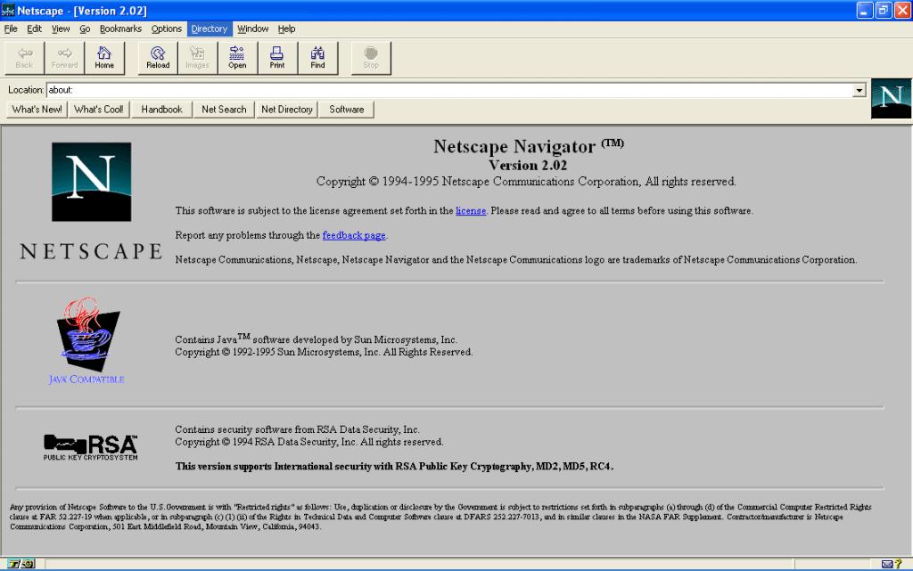 มัสก์ ถูกปฏิเสธ การทำงานกับ NetScape จนต้องคิดมาสร้างบริษัทตัวเอง