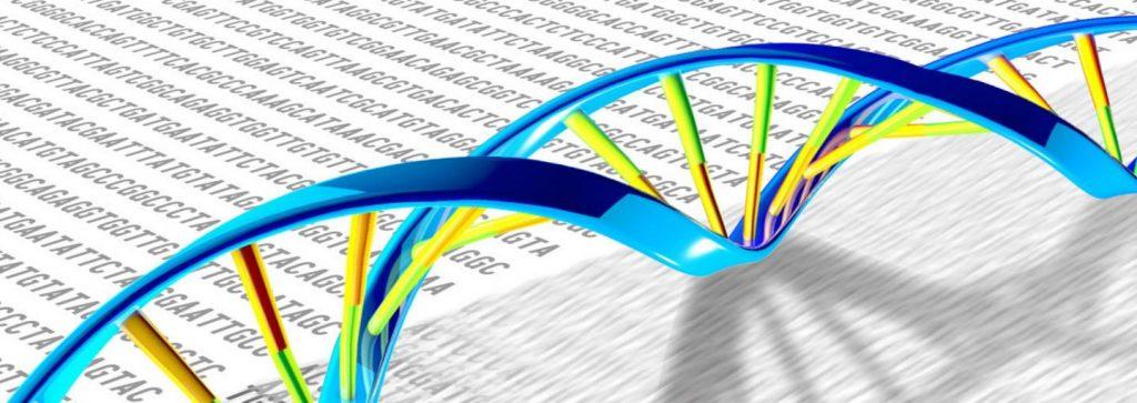 Google ได้มาช่วยเหลือในเรื่องยาก ๆ อย่าง ทำความเข้าใจถึงลักษณะพันธุกรรมของมนุษย์เรา