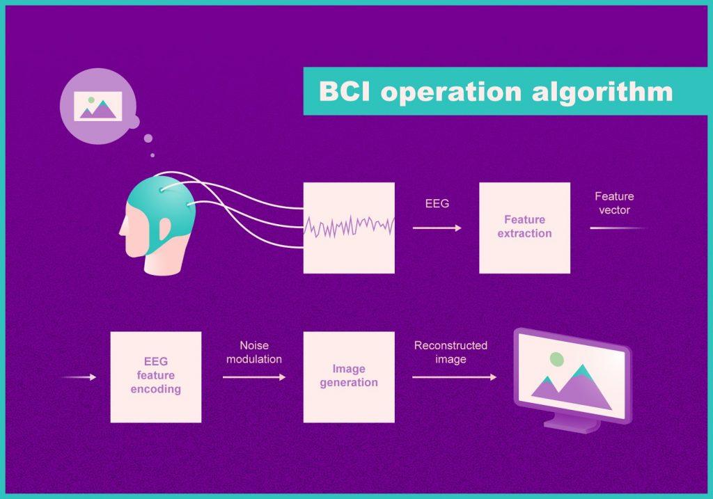 ลกอริทึมการทำงานของระบบสมองและคอมพิวเตอร์ (BCI) เครดิต: Anatoly Bobe / Neurobotics และ@tsarcyanide / MIPT Press Office