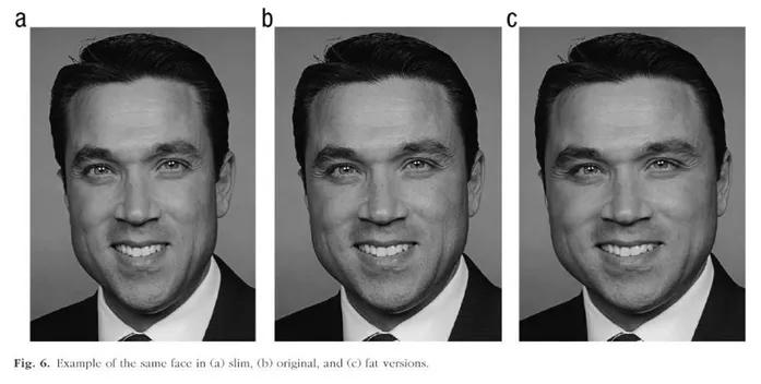 ใบหน้าของนักการเมืองคนเดียวกันสามแบบ โดยสองรูปใบหน้าถูกยืดหรือบีบด้วยโปรแกรมตัดแต่งภาพเพื่อจำลองใบหน้าที่บางหรือกว้าง