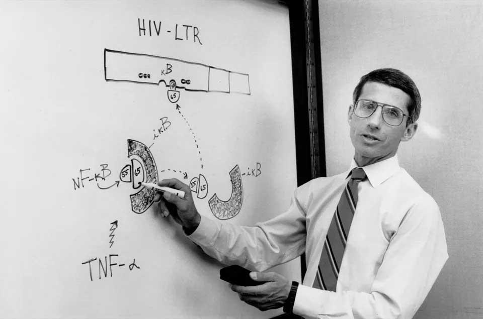 ในปี 1990 Fauci เป็นนักวิจัยชั้นนำของรัฐบาลที่เน้นเรื่องการแพร่ระบาดของโรคเอดส์